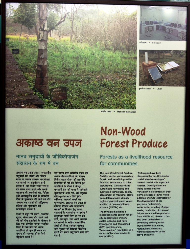 Non Wood Forest Produce