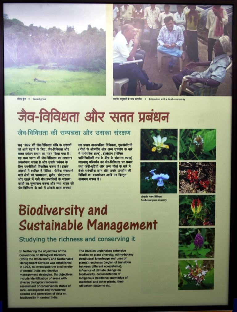 Biodiversity and Sustainable Management